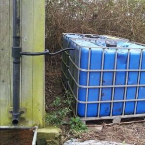 Beat the drought with a couple of 1000 litre tanks