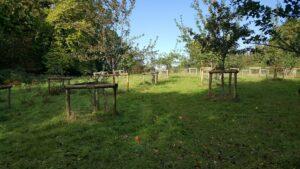 Cockington Orchard 2016